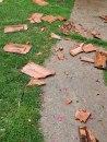 Jako nevreme pogodilo Šumadiju: Vetar lomio grane i skidao crepove sa kuća  FOTO
