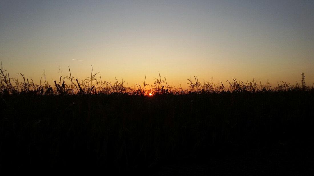 Jutro hladno, tokom dana sunčano, do 22 stepena