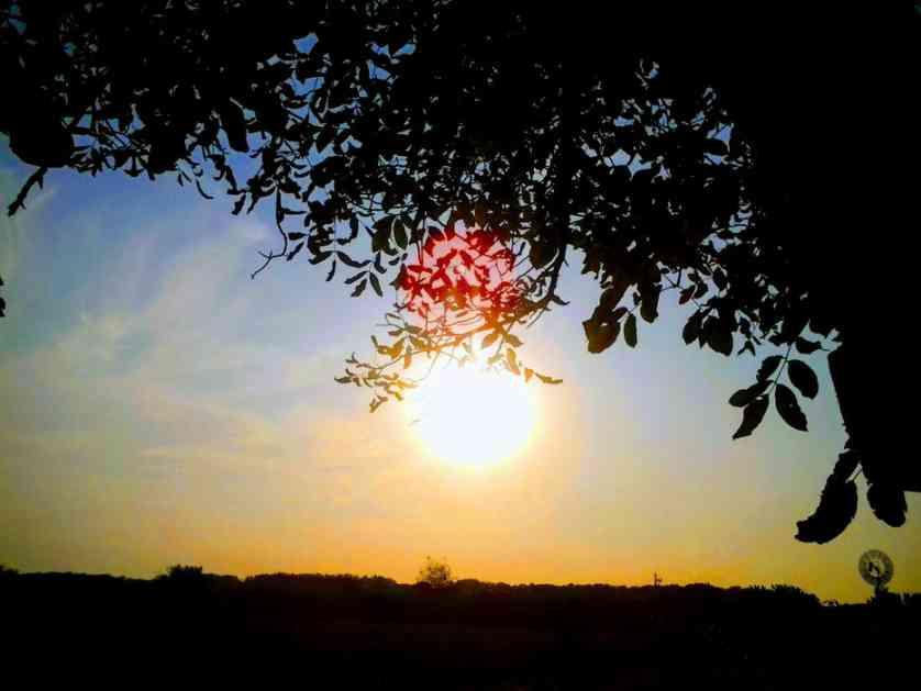 Jutro u Vojvodini 3 stepena, tokom dana sunčano i toplije