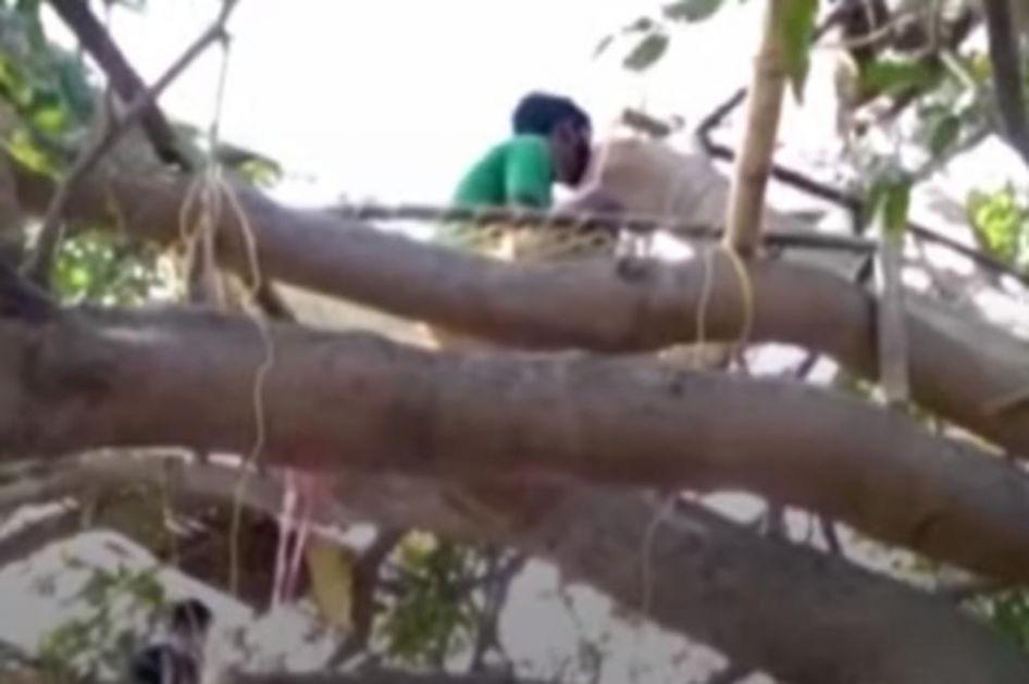 KAKO SE IZOLOVATI U ZEMLJI OD 1,3 MILIJARDE STANOVNIKA: Indijci na drveću napravili karantin! (VIDEO)