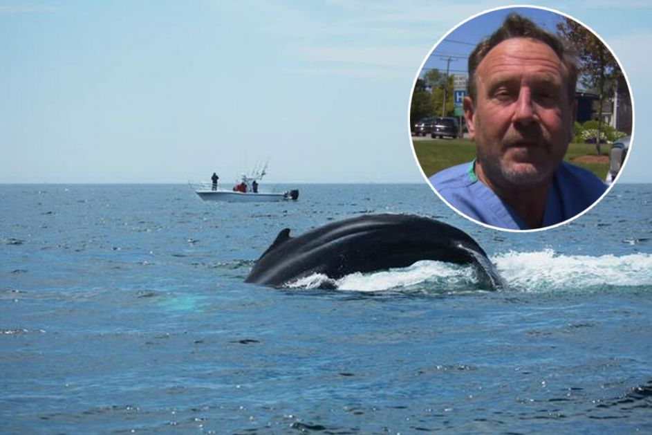 KAKVA JE TEKSTURA JEZIKA, DA LI UNUTRA IMA JASTOGA? Čovek koga je progutao kit odgovarao na pitanja o biblijskom susretu