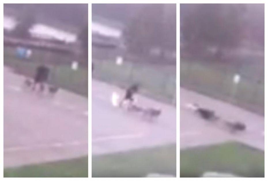 KAMERA UHVATILA STRAVIČAN MOMENAT! Čovek šetao pse kad ga je pogodio grom, pogledajte šta mu se desilo! (VIDEO)