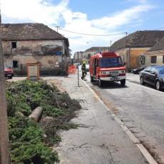 KAO DA BANIJI ZEMLJOTRES NIJE BIO DOVOLJAN: Nevreme poharalo Glinu i Petrinju, drveće padalo po ulicama (FOTO)