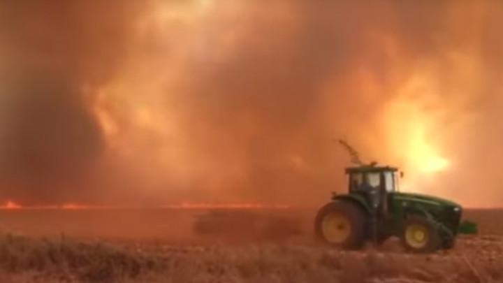 KATASTROFA U AMAZONIJI:Brazilska vojska spremna da odbrani pluća sveta (FOTO+VIDEO)