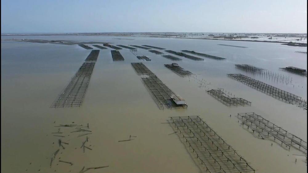 KATASTROFA U ŠPANIJI: 11 ljudi stradalo u strašnoj oluji, pirinčana polja pod vodom, plaže uništene (VIDEO)