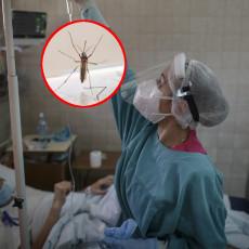 KOMARCI I MUVE PRENOSE KORONU Srpski doktor otkrio ko mora biti posebno na oprezu