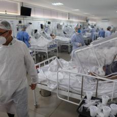 KORONA U VOJVODINI POD KONTROLOM: U Novom Sadu i Sremskoj Kamenici hospitalizovano 237 pacijenata, na respiratorima 17