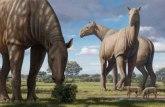 Kako je nosorog sa zmajevim kostima završio na Tibetu?