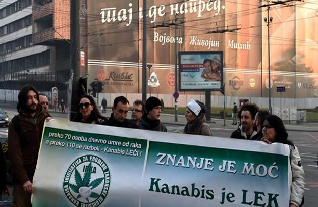Kanabis je lek Odrzan skup ispred vlade traze legalizaciju marihuane u medicinske svrhe (FOTO)