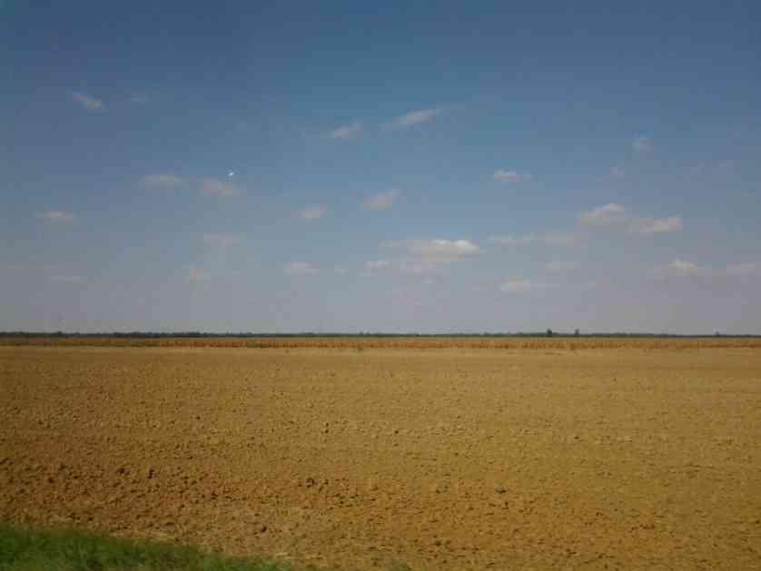Kikinda: Na licitaciji oko 9.000 hektara zemljišta