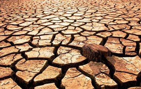 Klimatske promjene prijete rastu, posebno afričkih država