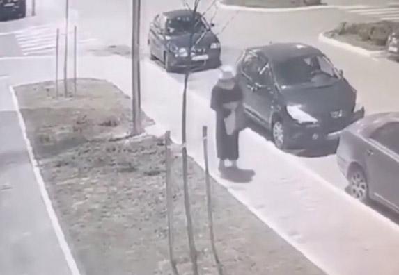 Ko ubija pse!? Objavljen je snimak strašnog čina! (VIDEO)