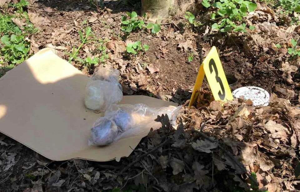 Kokain pronađen u šumi kod Vrdnika, uhapšeni osumnjičeni