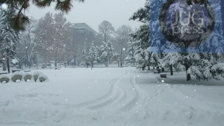 Komunalac čisti sneg