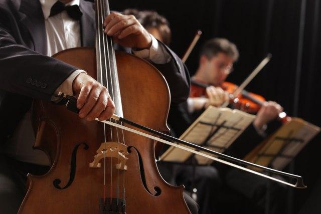 Koncert klasične muzike Živeh za umetnost biće održan 14.novembra