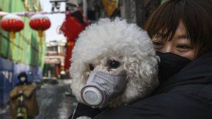 Korona virus: Priča o Balkankama iz Kine – mesec dana kasnije