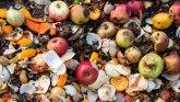 Korona virus i bacanje hrane: Više od 900 miliona tona hrane se baci u svetu svake godine