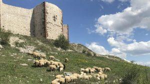 Kosovo iz drugog ugla: Zašto baš moram da idem tamo?