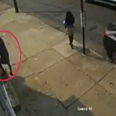 LOPOV DOBIO ŠTA JE ZASLUŽIO: Probao da provali u stan, pa ga zateklo nešto neočekivano (VIDEO)