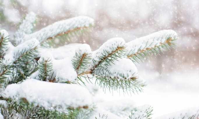 Ledeni dani do srede, novi talas krajem decembra i za Božić
