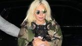 Lejdi Gaga: Pronađeni oteti buldozi, ranjeni šetač pasa se oporavlja