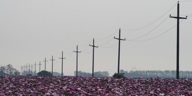 Lopovi ukrali skoro dve tone visokonaponskog kabla