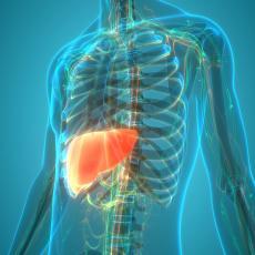 MASNA JETRA JE ČESTA I VEOMA JE OPASNA: Ovaj PRIRODNI NAPITAK brzo pomaže u čišćenju ovog vitalnog organa
