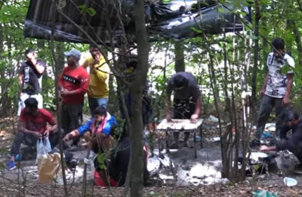 MIGRANTI SE NASTANILI U ŠUMI: Napravili kamp kod Velike Kladuše! Žive bez vode, struje i nadaju se da će preći granicu! (VIDEO)