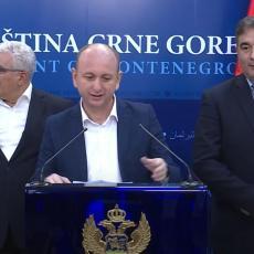 MILAN KNEŽEVIĆ UZEO PRAVDU U SVOJE RUKE! Udarna vest u Crnoj Gori - nova pobeda jednog od lidera DF-a (FOTO)
