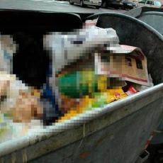 MISLILI STE DA STE SVE VIDELI? Neverovatan slučaj u Beogradu: pod video nadzorom - KONTEJNERI (FOTO)