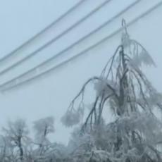 MUKE MEŠTANA NA JUGU SRBIJE: Sneg i led ih okovali, čak 1.500 domaćinstava nema električnu energiju (FOTO)