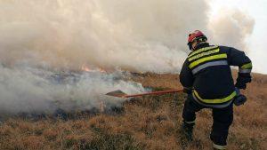 MUP: Lokalizovan požar na Morkoj Gori