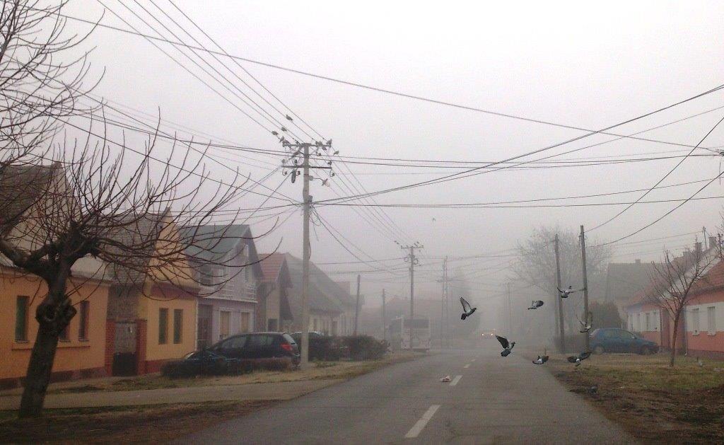 Oprez zbog moguće poledice, preusmeren saobraćaj iz pravca Novog Sada ka Beogradu
