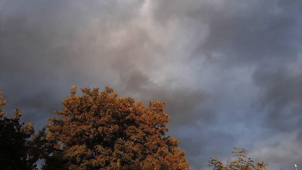 Malo i umereno oblačno, uveče i tokom noći slaba kiša