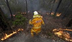 Mega požar besni nadomak Sidneja
