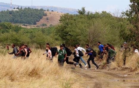 Migranti lutaju liburnijskim šumama