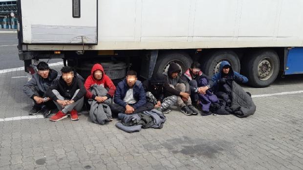 Migranti pronađeni među glavicama makedonskog kupusa