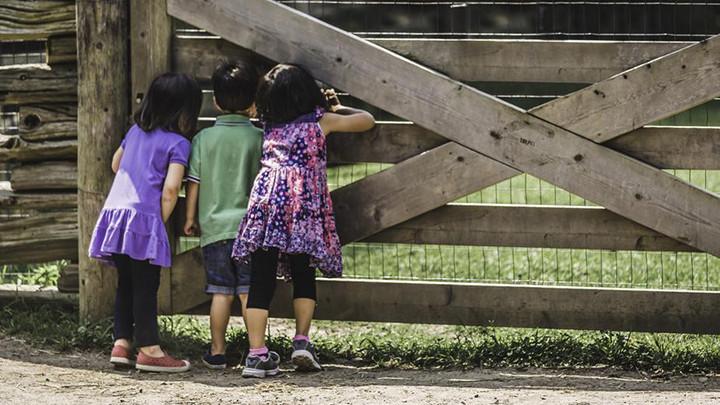 Mlađa deca razvijaju originalnu strategiju -Prvorođeni su konzervativniji