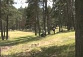 Mnogi na Zlatiboru potražili spas: Neki su tamo već drugi put VIDEO