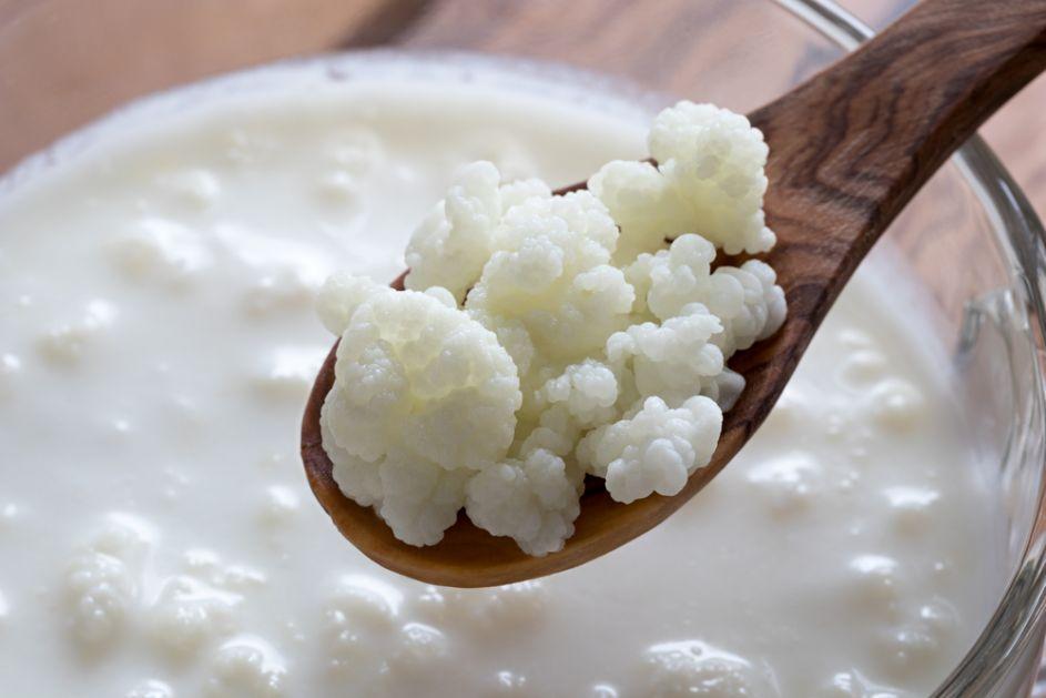 Moćna zrnca sa Kavkaza: Napravite kefir, ruski napitak koji jača imunitet i doprinosi dugovečnosti