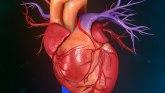 Može li nam veštačka inteligencija pomoći u lečenju srca?