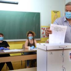 NA KOJE GRADOVE CILJAJU SRBI U HRVATSKOJ: Ovo su srpske stranke na hrvatskim lokalnim izborima!