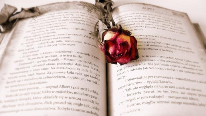 NAORUŽANI ROMANTIČARI - Dvojica mladića upala na čas maskirani, sa plastičnim pištoljima i poklonili ružu jednoj učenici!