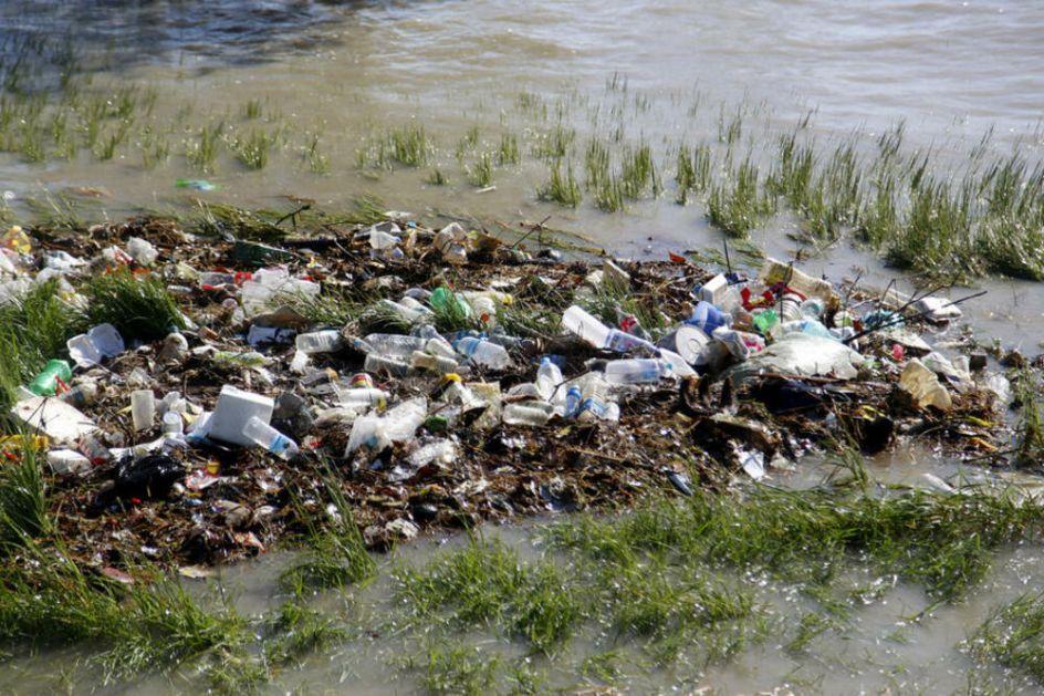 NEOBIČNI I OPASNI AUTOSTOPERI: Morske životinje putuju svetom na plutajućem otpadu, ugrožavaju biodiverzitet i ekosisteme