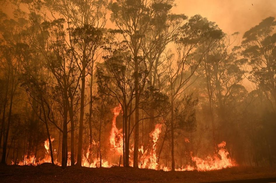 NESREĆA U AUSTRALIJI: Srušio se avion koji je gasio požare! Poginulo troje ljudi (VIDEO)