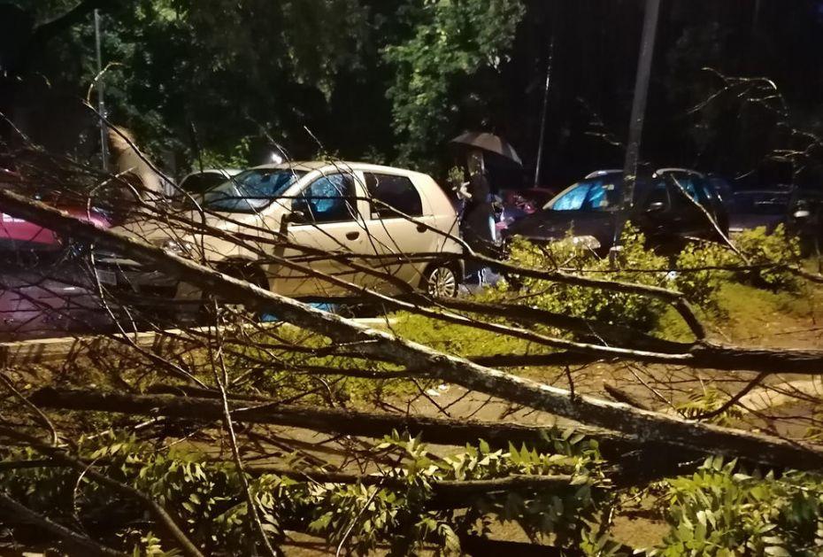 NEVREME U BEOGRADU NAPRAVILO VELIKU ŠTETU: Drveće padalo po automobilima na Medakoviću! Vozila POTPUNO uništena (FOTO)
