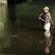 NEZAPAMĆEN EKOCID: Iz reke izvučeno preko 100 kilograma mrtve ribe - policija i veterinari ispituju slučaj