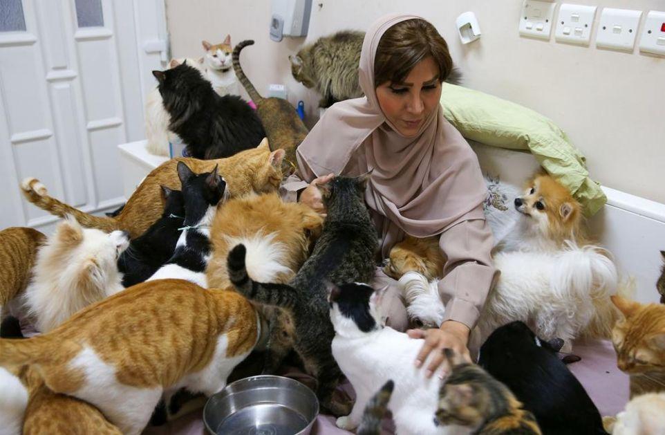 NJENA KUĆA JE CARSTVO 500 MAČAKA: Marjam je udomila i 12 pasa i svi se bore za njenu pažnju! OVOLIKO je ta ljubav košta mesečno!