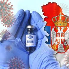 NOVI KONTINGENT FAJZERA NA TORLAKU! Redovnom isporukom vakcina stiglo još 85.410 doza