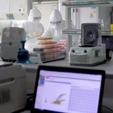 NOVI SOJEVI PRISTIŽU, IMA LI MESTA PANICI? Dr Šekler, koji je prvi pročitao genom korone, otkriva sada sve o njoj!